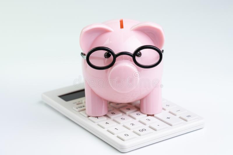 Budget, cost or investment calculation and financial activity concept, pink piggy bank wearing glasses on white calculator on. White background stock image