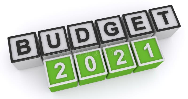 budget 2021 - photo #4