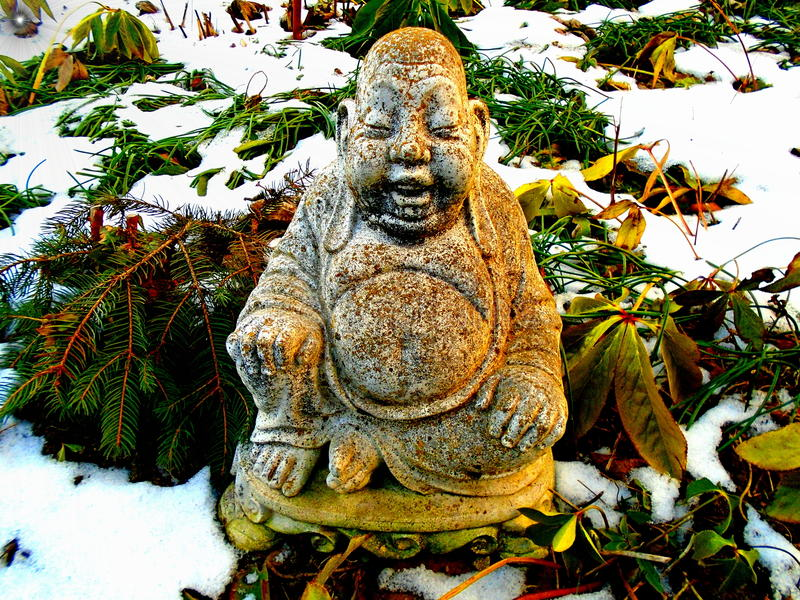 Budha i vinter royaltyfria bilder