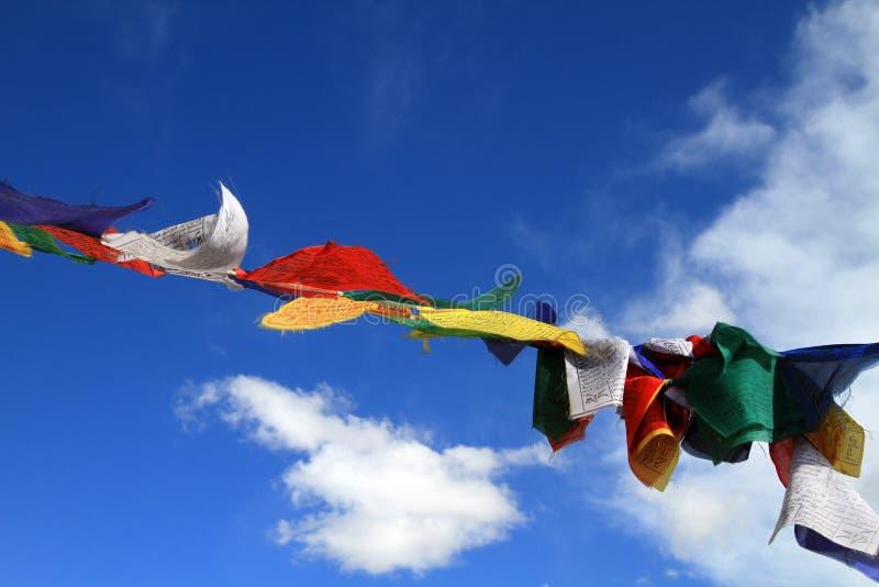 Budhist神圣的旗子 免版税库存图片
