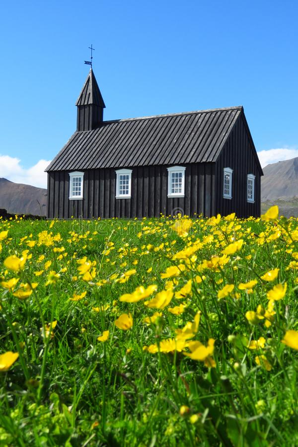 Budir black church surrounded by buttercups under a bright blue sky, Snæfellsnes, Iceland. Budir black church surrounded by yellow buttercups under a bright stock photography