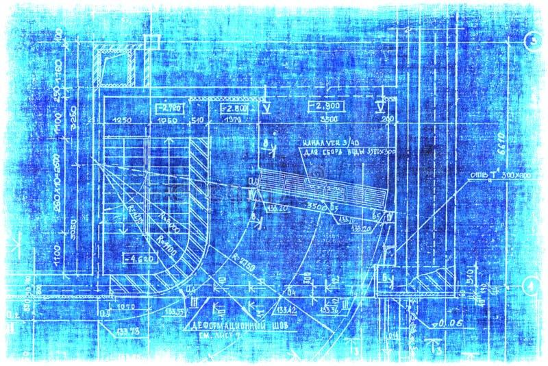 budowy czerepu planu rocznik ilustracji