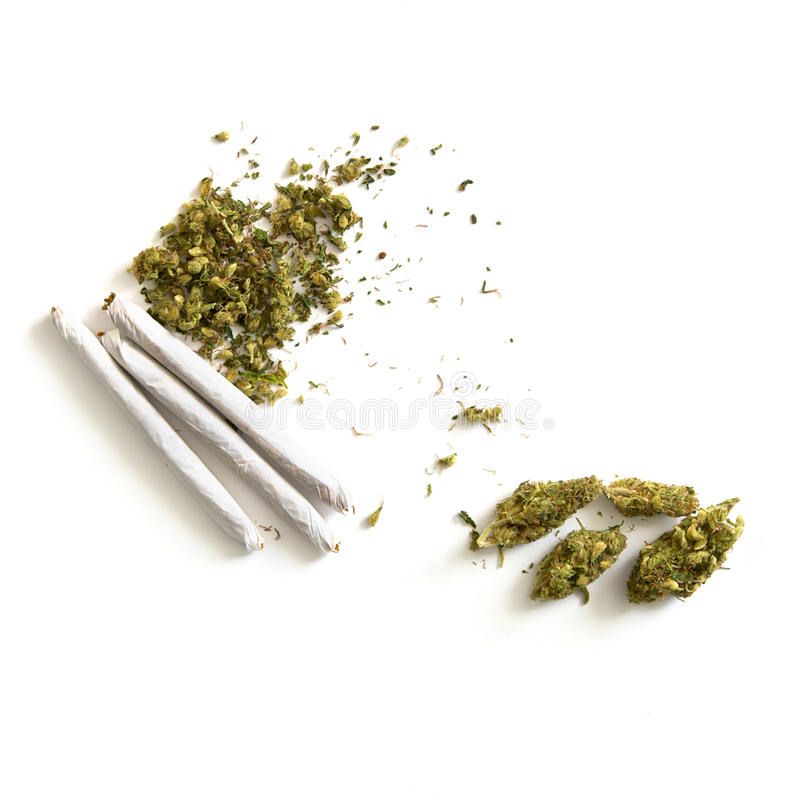 Buds Chaff And Joints Royalty Free Stock Photo
