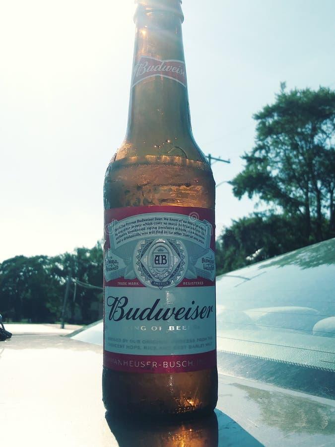 Budweiser życia styl zdjęcia stock