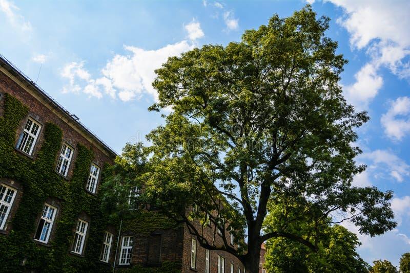 Budynek architektura, część Wawel Królewski kasztel w Krakow, Polska fotografia stock