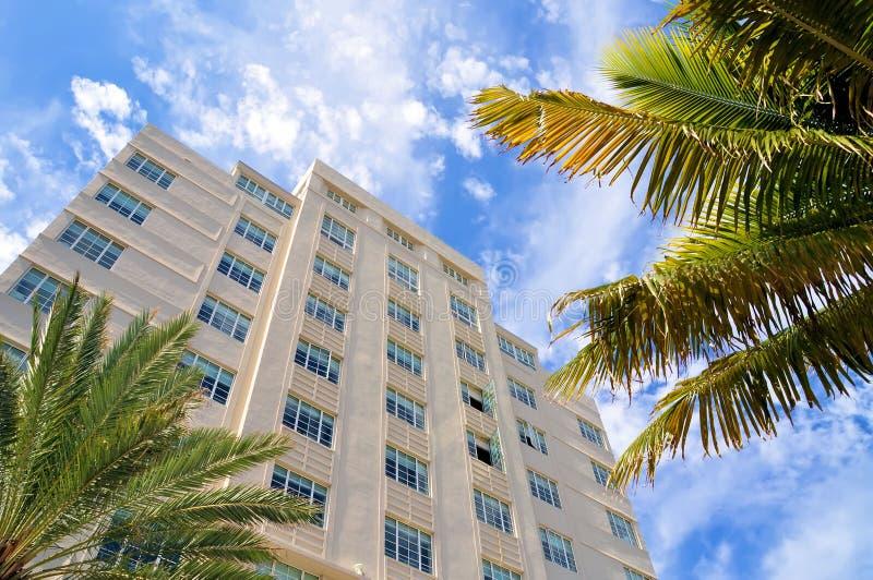 budynków drzewa palmowi wysocy zdjęcie royalty free