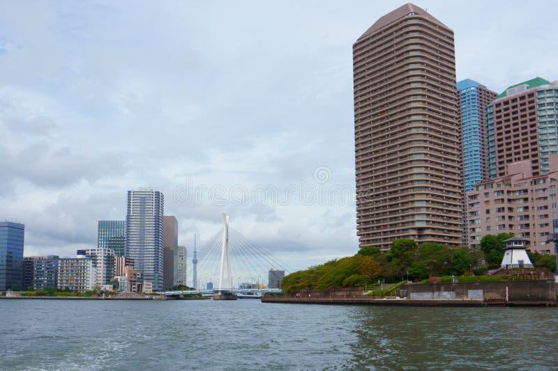 Budynki mieszkaniowi i japończyk uprawiają ogródek na Sumida Rzeczny Tokio Japonia obrazy stock