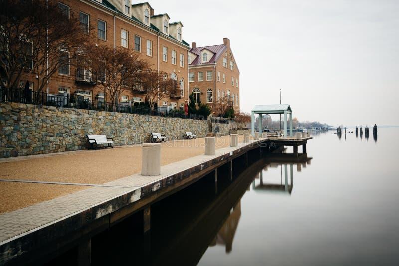 Budynki mieszkaniowi wzdłuż Potomac Rzecznego nabrzeża w Alexa, obrazy royalty free