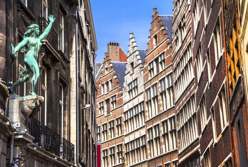Budynki w Antwerpen Belgia fotografia royalty free