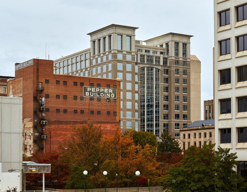 Budynki w w centrum Salem, Pólnocna Karolina fotografia stock