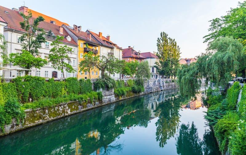 Budynki w Ljubljana w ranku obrazy stock
