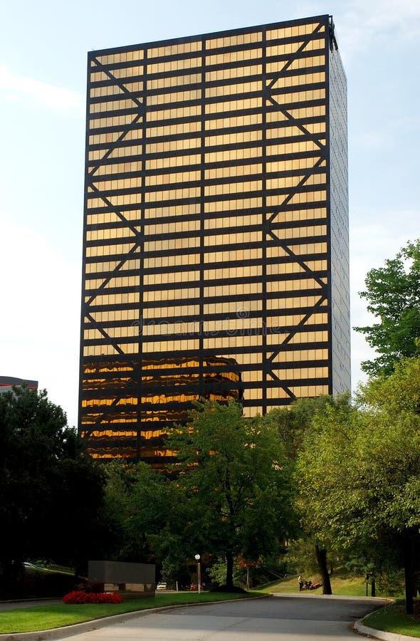 budynku wysokiego urzędu wzrost zdjęcie royalty free