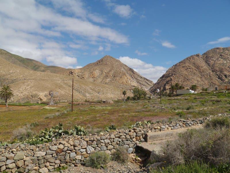 Buen Paso con le palme su Fuerteventura fotografie stock libere da diritti