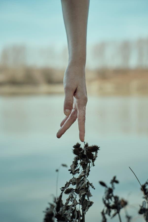 Buenas manos en texturas naturales fotos de archivo