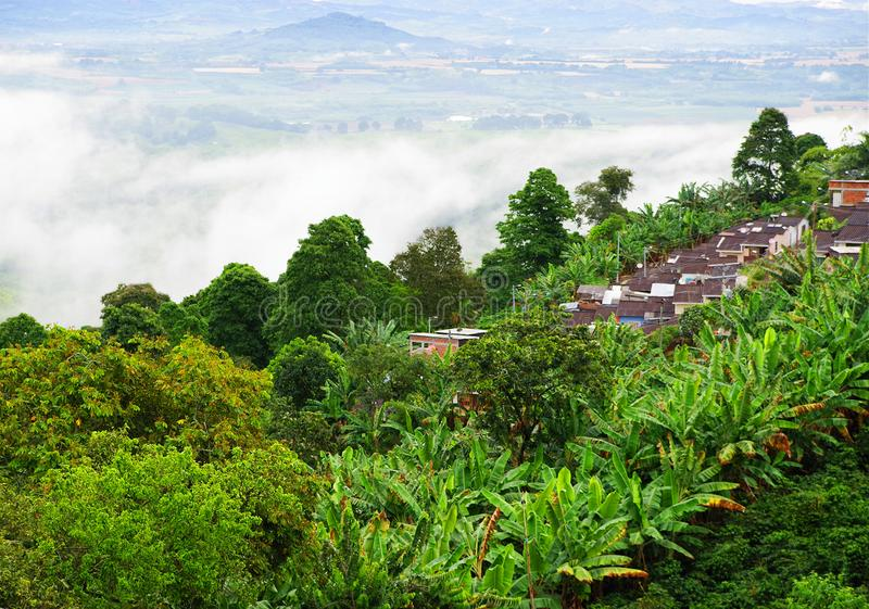 Misty landscape in Buenavista, Quindio. Buenavista is a municipality in the south-central part of the department of Quindio, Colombia. It is known and named stock image