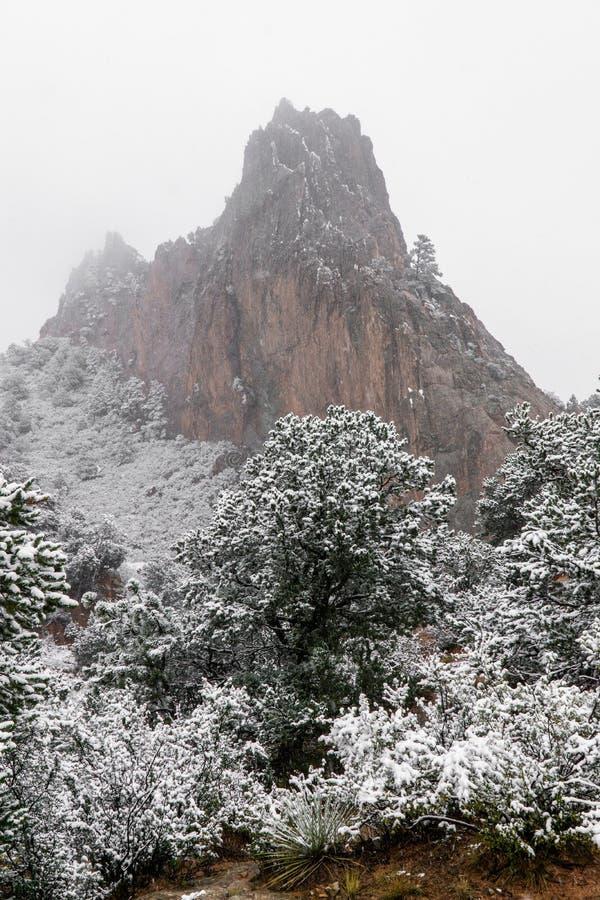 Bufera di neve al giardino delle montagne rocciose di Colorado Springs dei durante l'inverno coperto in neve immagini stock libere da diritti