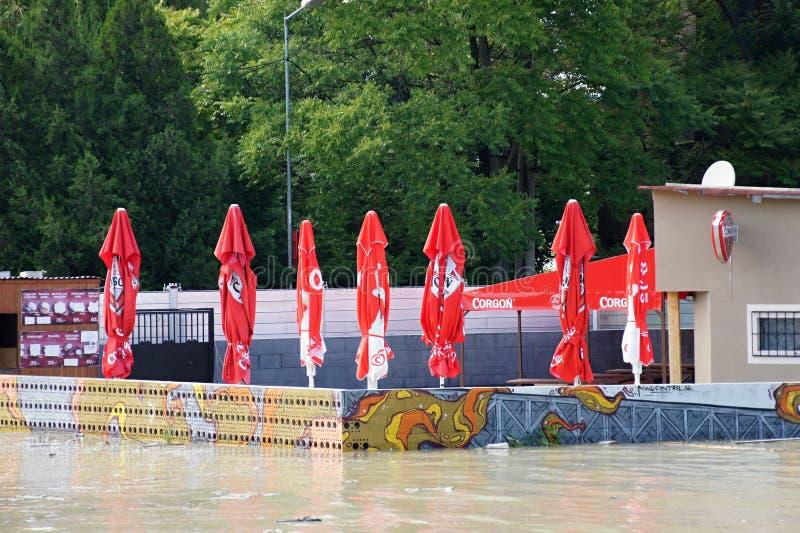 Bufet pod wodą - nadzwyczajna powódź na Danube w Bratislava, zdjęcia royalty free