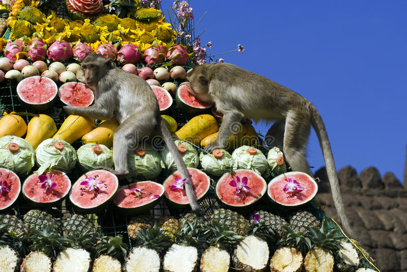 bufeta festiwalu małpa Thailand fotografia royalty free