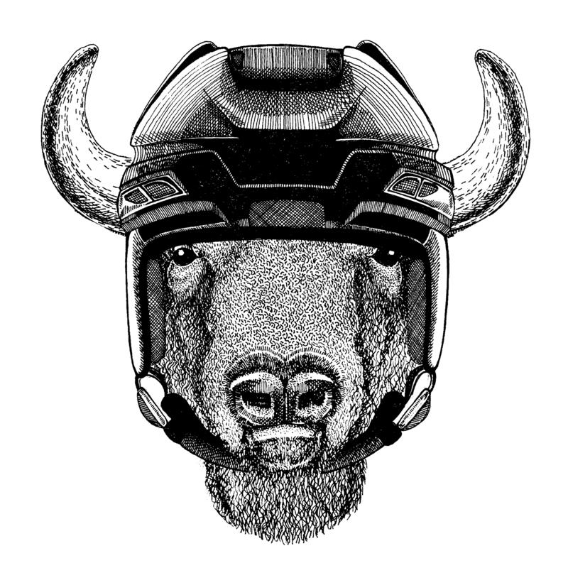 Buffalo, bison, boeuf, casque de port d'hockey de taureau Image tir?e par la main de lion pour le tatouage, T-shirt, embl?me, ins illustration libre de droits