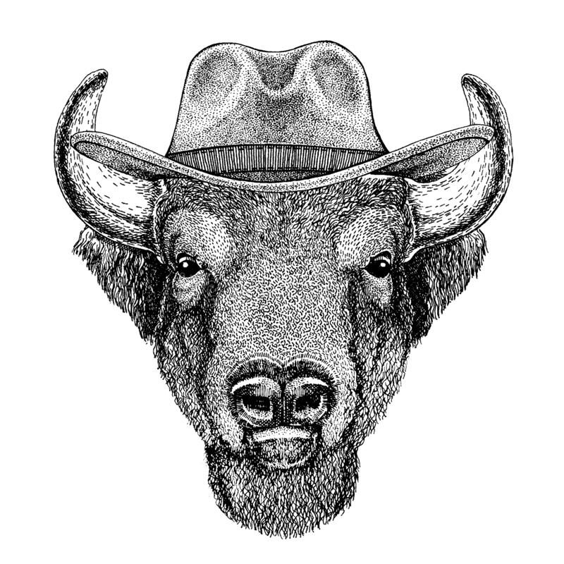 Buffalo, bison, boeuf, chapeau de cowboy de port de taureau Animal occidental sauvage r illustration de vecteur