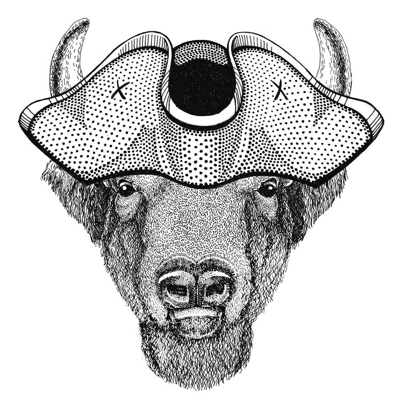 Buffalo, bison,ox, bull animal wearing pirate hat Cocked hat, tricorn Sailor, seaman, mariner, or seafarer stock image