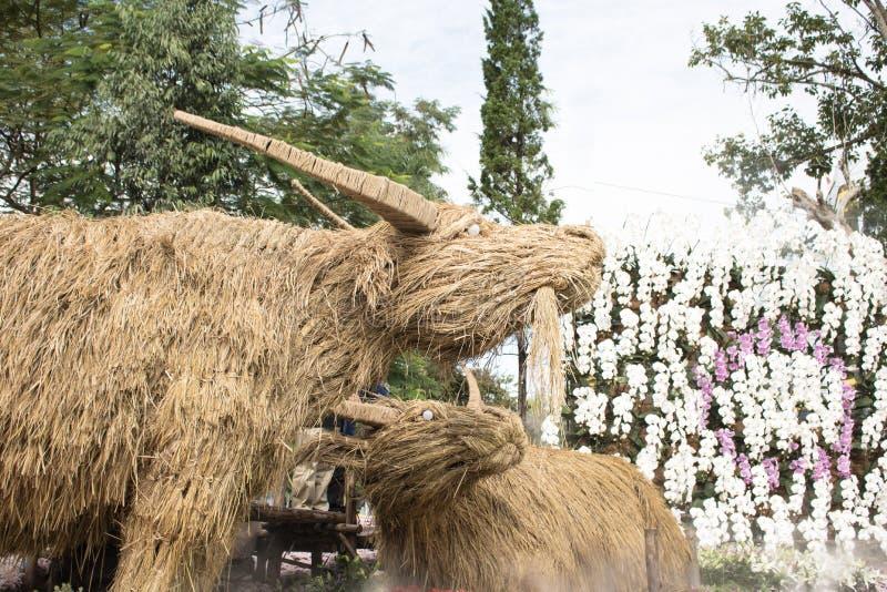 Buffalo, fatta da paglia di riso in giardino fotografie stock
