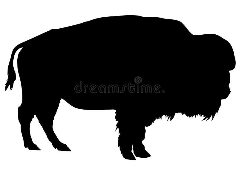 Buffalo vector illustration