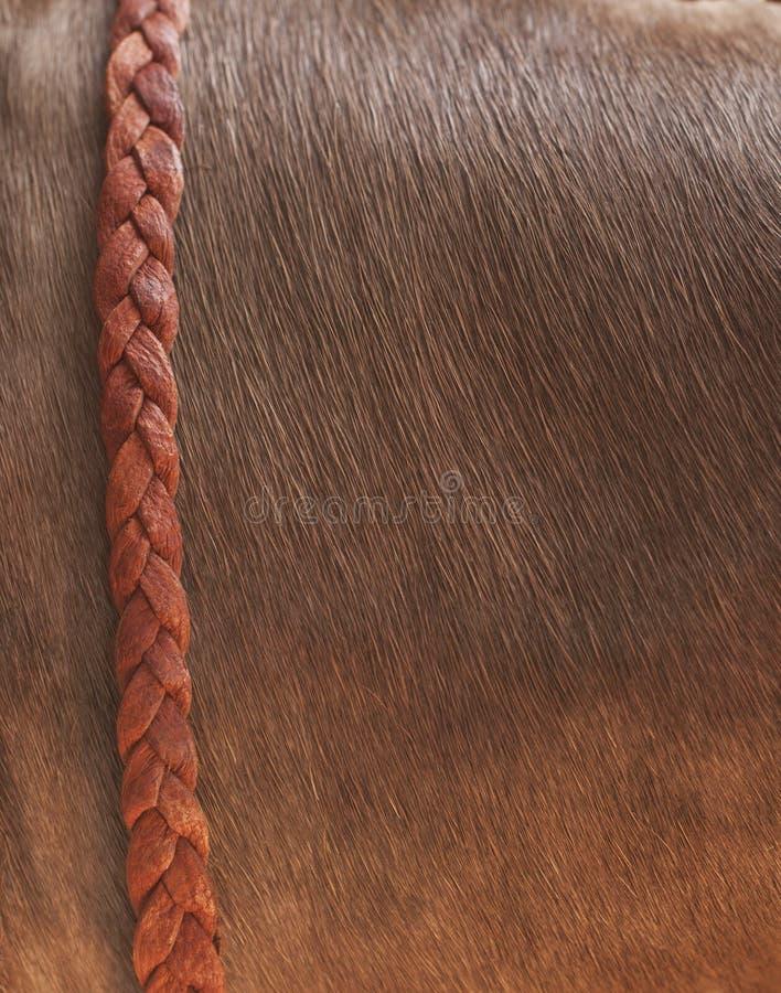 Buffalo skin background with leather braid stock photos