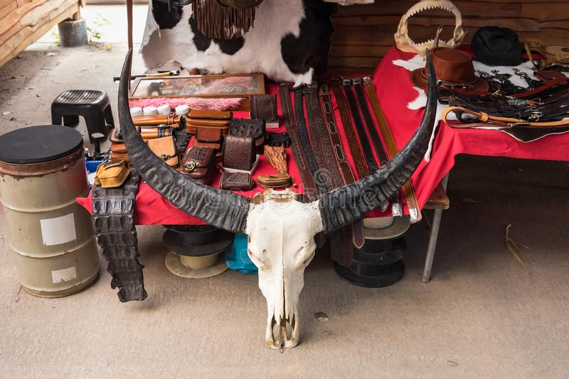 .Buffalo skull in a leather shop.Thailand stock photo