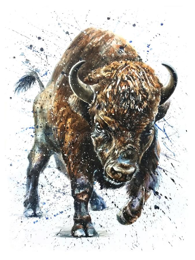 Buffalo watercolor wildlife painting, bison royalty free stock images