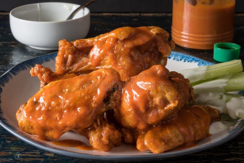 Buffalo Wings stock photography