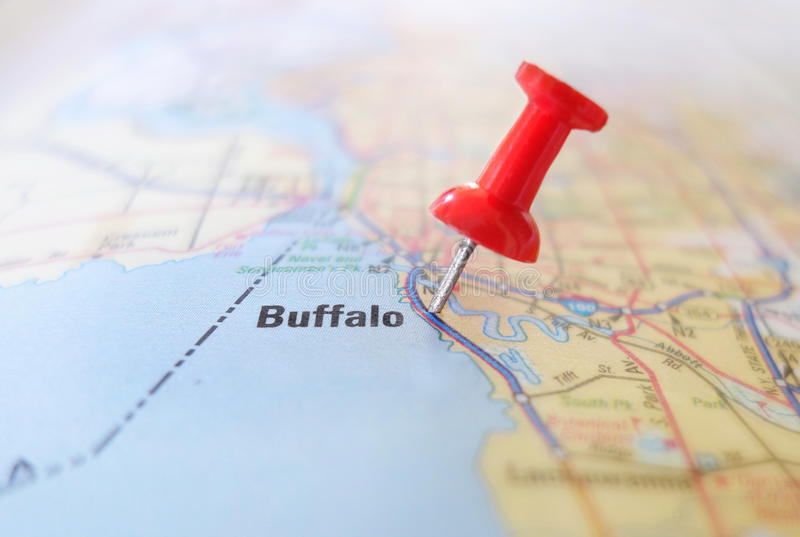 Buffelöversikt royaltyfria bilder