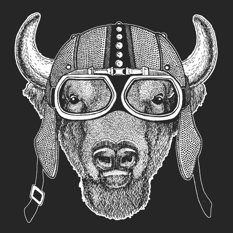 Buffel bison, oxe, hemlet för tjurtappningmotorcykel Retro stilillustration med den djura cyklisten för barn, ungar vektor illustrationer