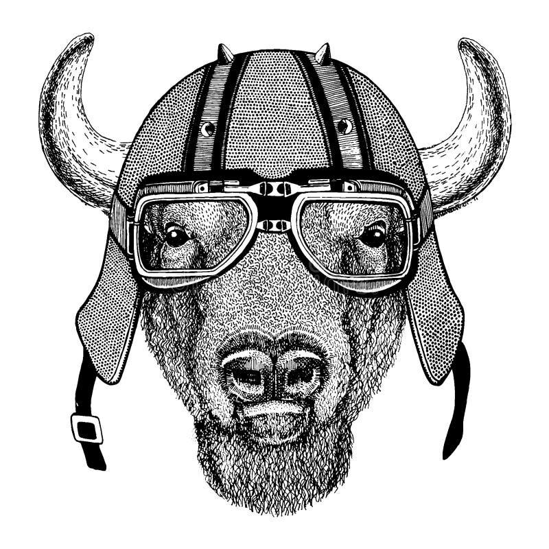 Buffel bison, oxe, tjur som bär en motorcykel, aero hjälm Utdragen bild för hand för tatueringen, t-skjorta, emblem, emblem, logo vektor illustrationer