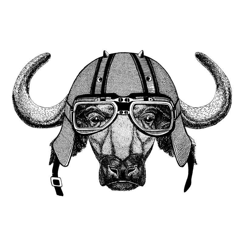 Buffel tjur, oxe som bär en motorcykel, aero hjälm Utdragen bild för hand för tatueringen, t-skjorta, emblem, emblem, logo, lapp stock illustrationer
