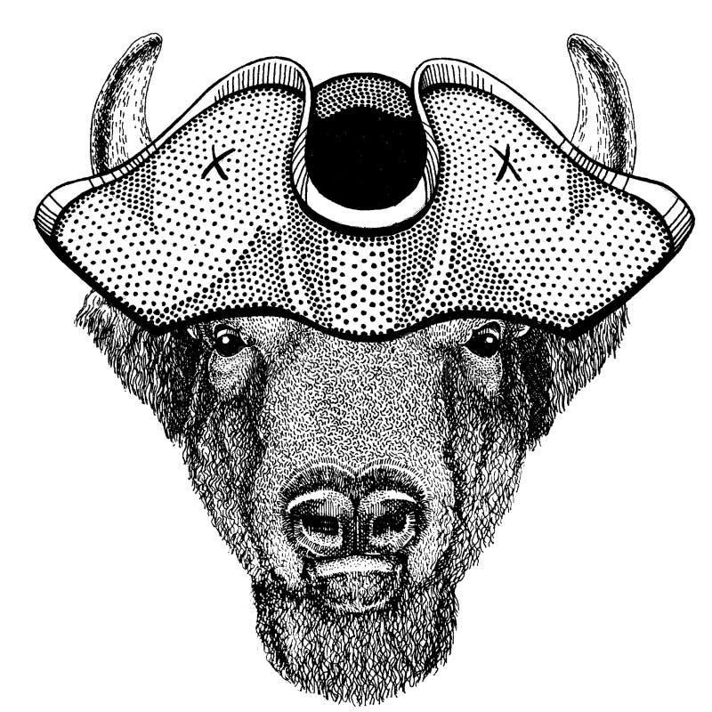 Buffeln bisonen, oxen, att bära för tjur piratkopierar den tricorn hatten Capitan dräkt stock illustrationer