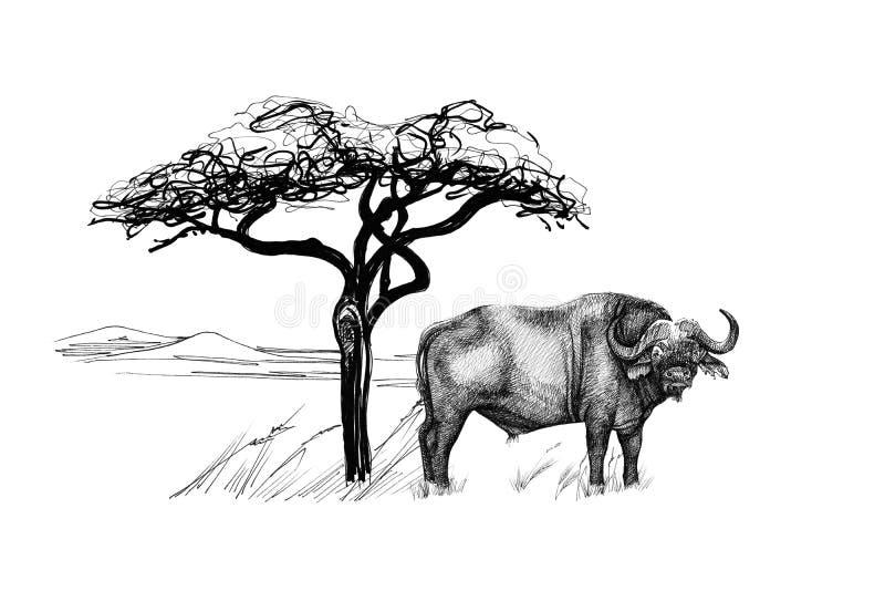 Buffels dichtbij een boom in Afrika Hand getrokken illustratie stock illustratie