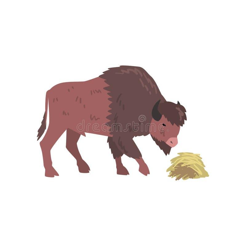 Buffels die Hooi, Bison Animal, Zijaanzicht eten Vectorillustratie royalty-vrije illustratie