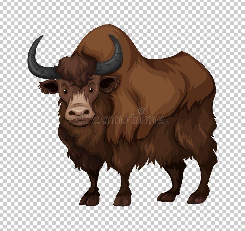 Buffels met lang haar vector illustratie