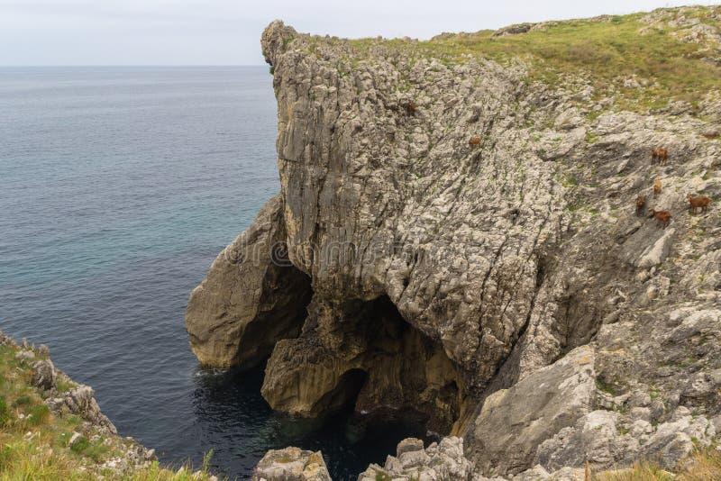 Bufones de Arenillas near LLanes. In Asturias Spain stock photos