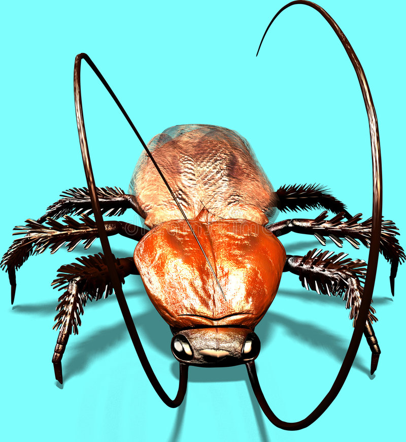 Download Bug! stock illustration. Image of ekel, cellar, dirt, fear - 1710160