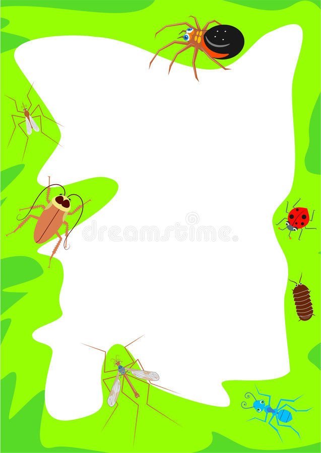 Bug Border. Insects and bugs frame design vector illustration