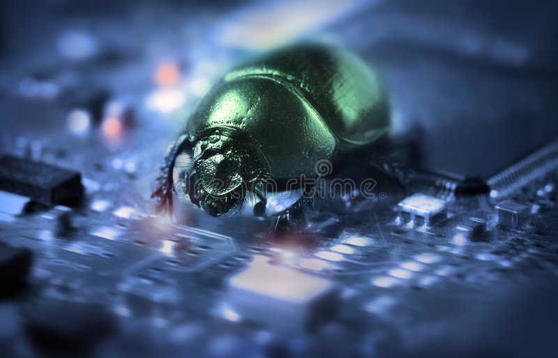 Bug on a computer chip stock photo
