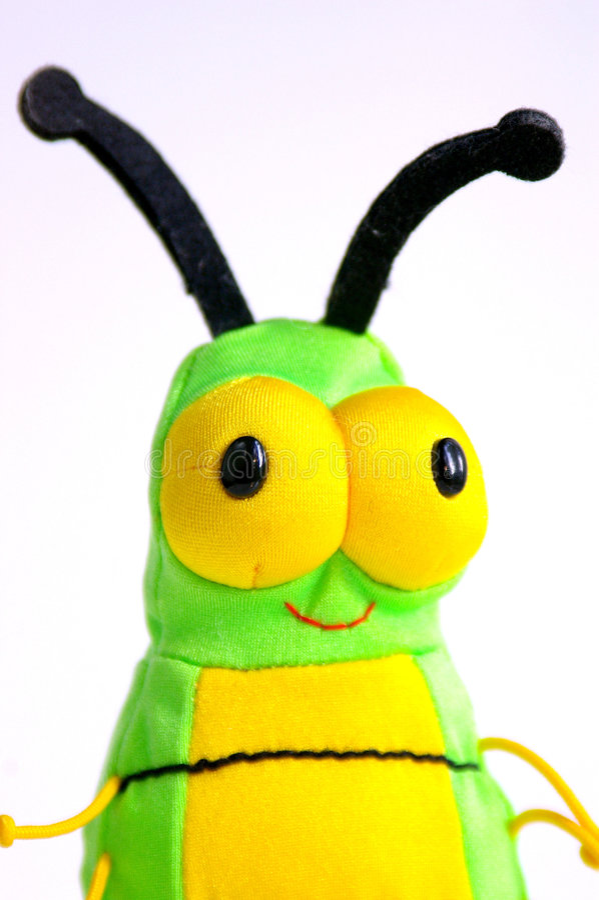 Bug Eyes Stock Photo