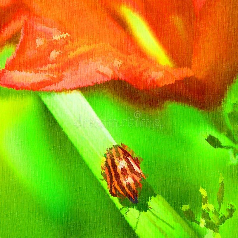 Bug on a grass.digital painting vector illustration