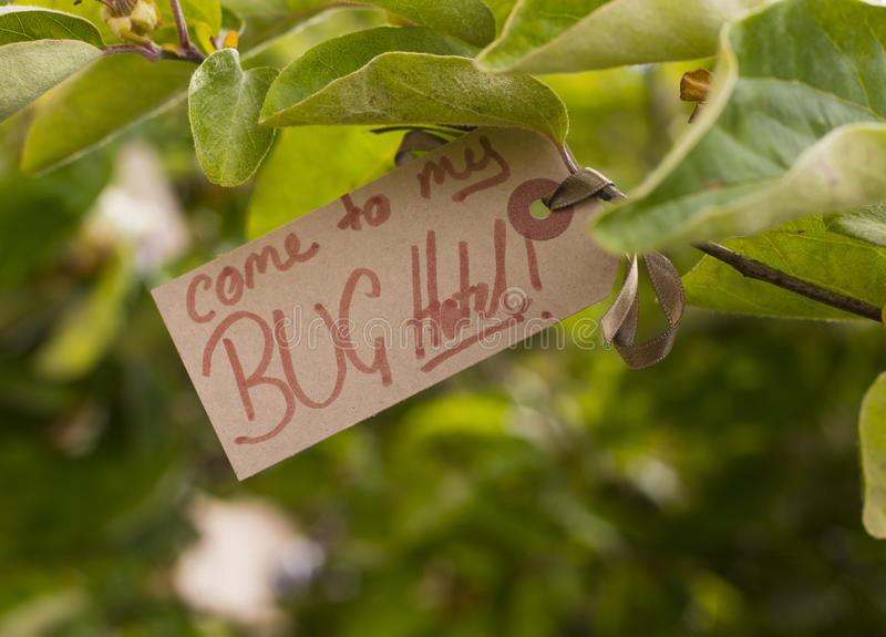 Bug hotel sign stock photography