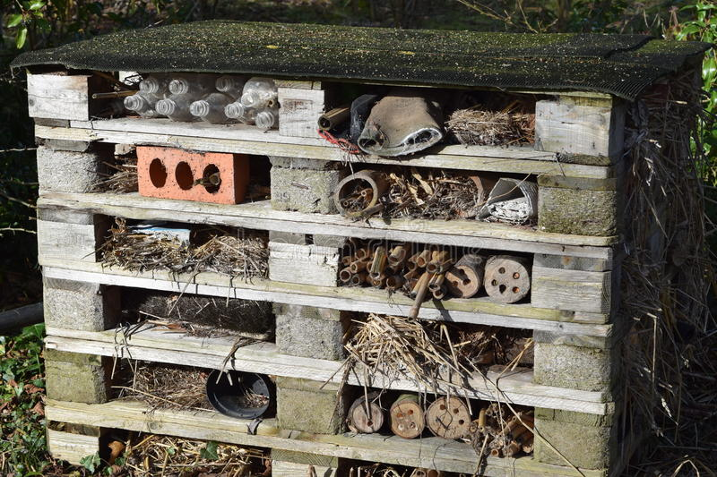 Bug hotel. On the wirral united Kingdom stock photo