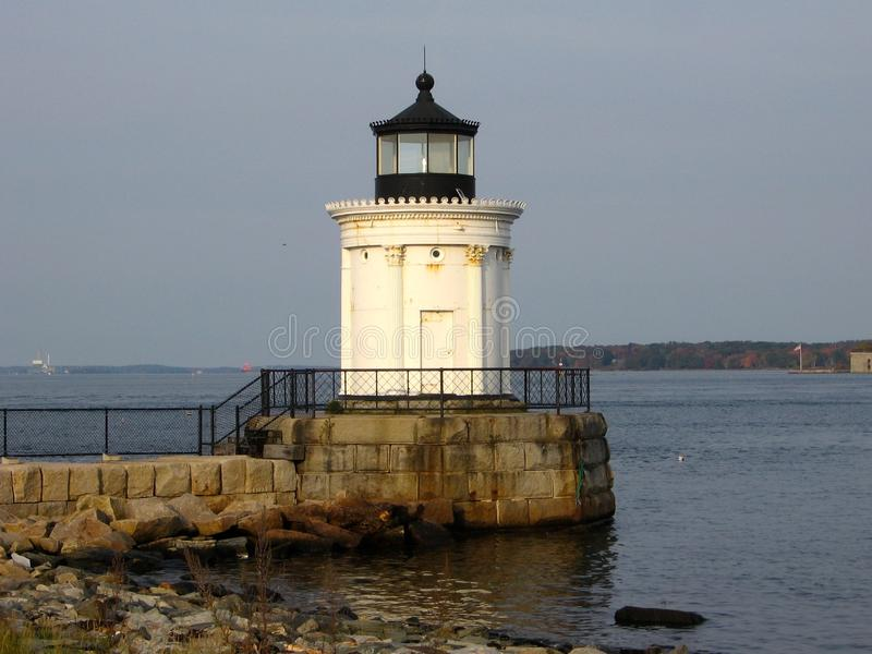 Bug Light royalty free stock images