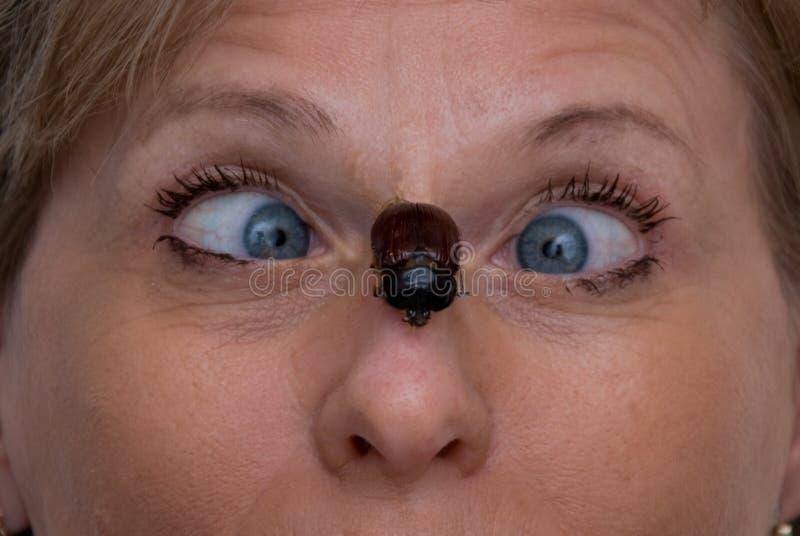 Bug on Nose