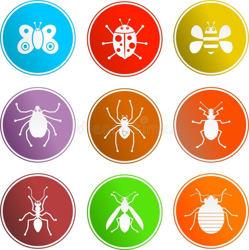 Download Bug sign icons stock vector. Image of highway, bugs, label - 3289538
